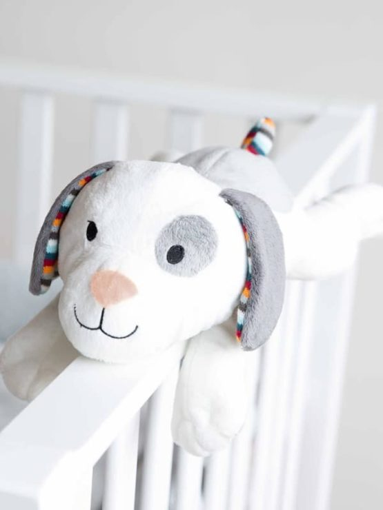 Zazu – Dex Σκυλάκι με λευκούς ήχους
