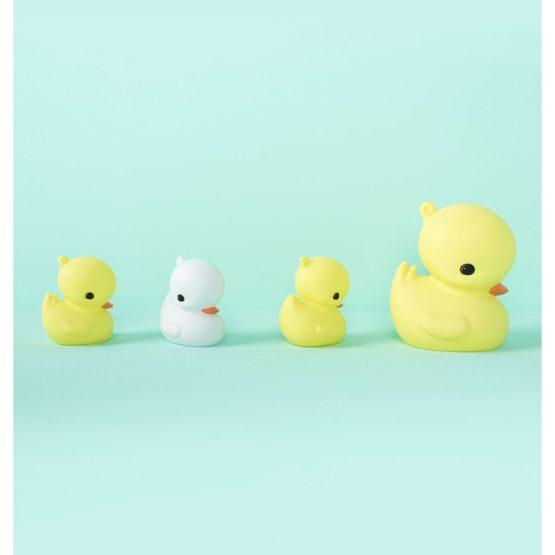 LLDUYL37 LR 5 Little Light Yellow Duck