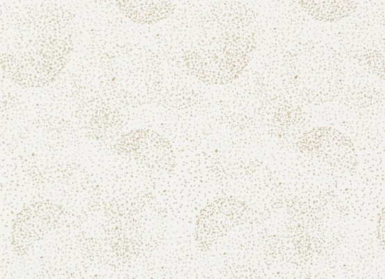 Gold Bubble White Nobodinoz 5