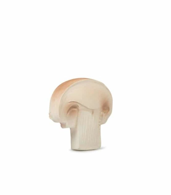 Manolo The Mushroom (1)