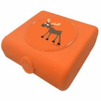 107407 Sandwichbox Kids Orange Web Scaled